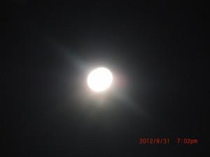 831_004